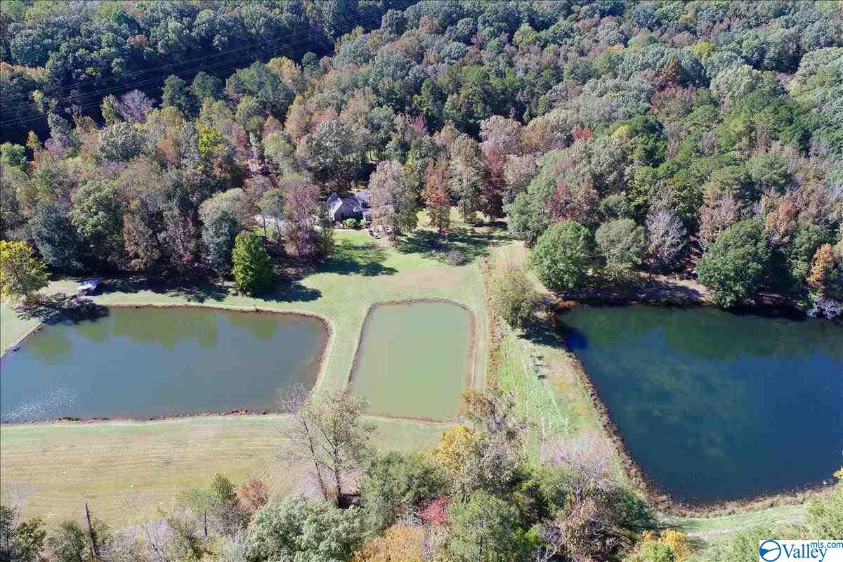Photo of home for sale at 00 Fall Bluff Drive, Decatur AL