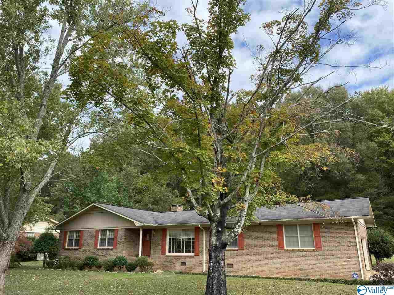 Photo of home for sale at 1009 Hood Avenue, Scottsboro AL