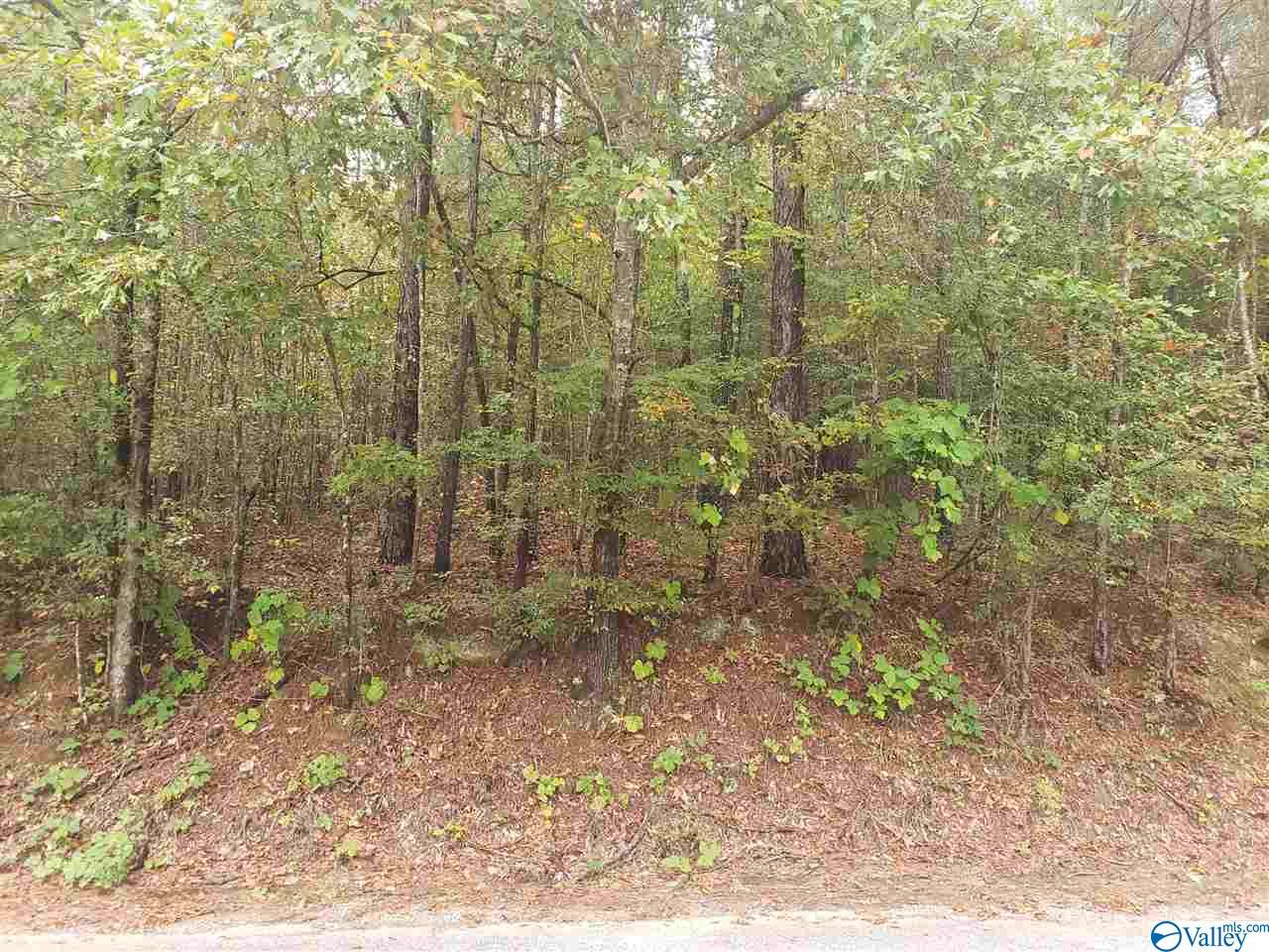 Photo of home for sale at 0 Township Road, Rainbow City AL