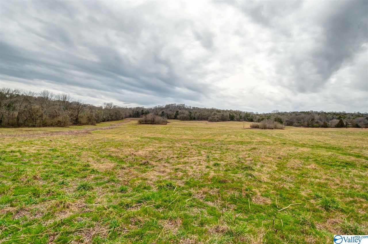 Photo of home for sale at 0 March Mill Road, Fayetteville TN