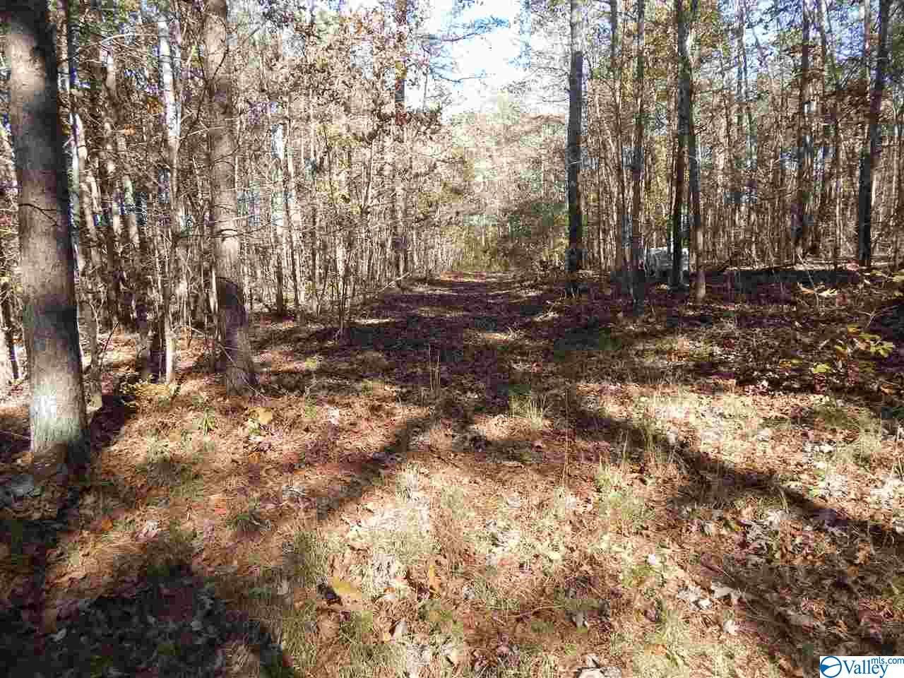 Photo of home for sale at 10 AC Road 9002, Mentone AL
