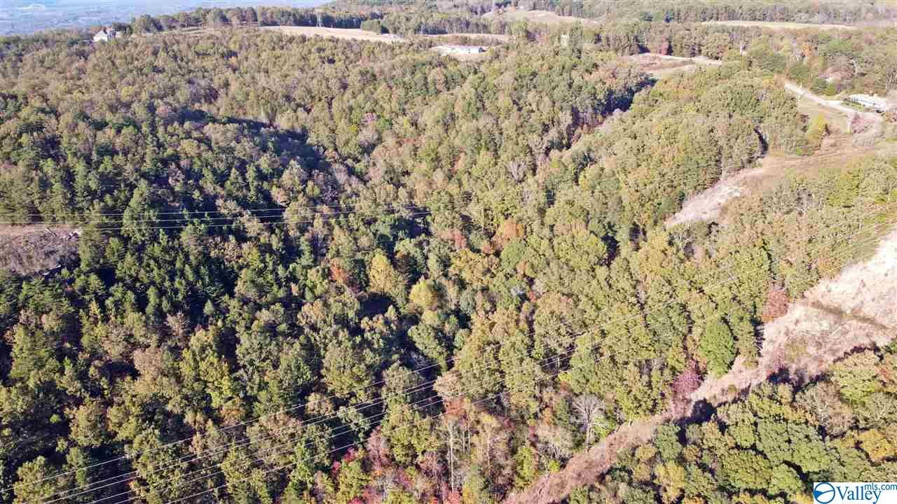 Photo of home for sale at 0 County Road 131, Bryant AL
