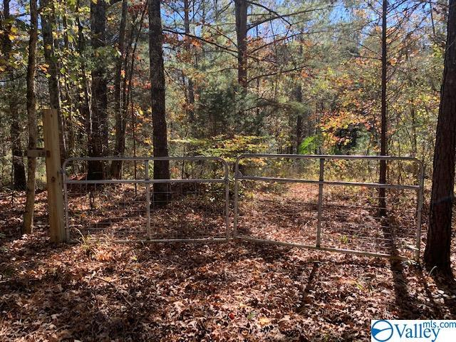 Photo of home for sale at LOT 10 Stewart Hollow Road, Grant AL