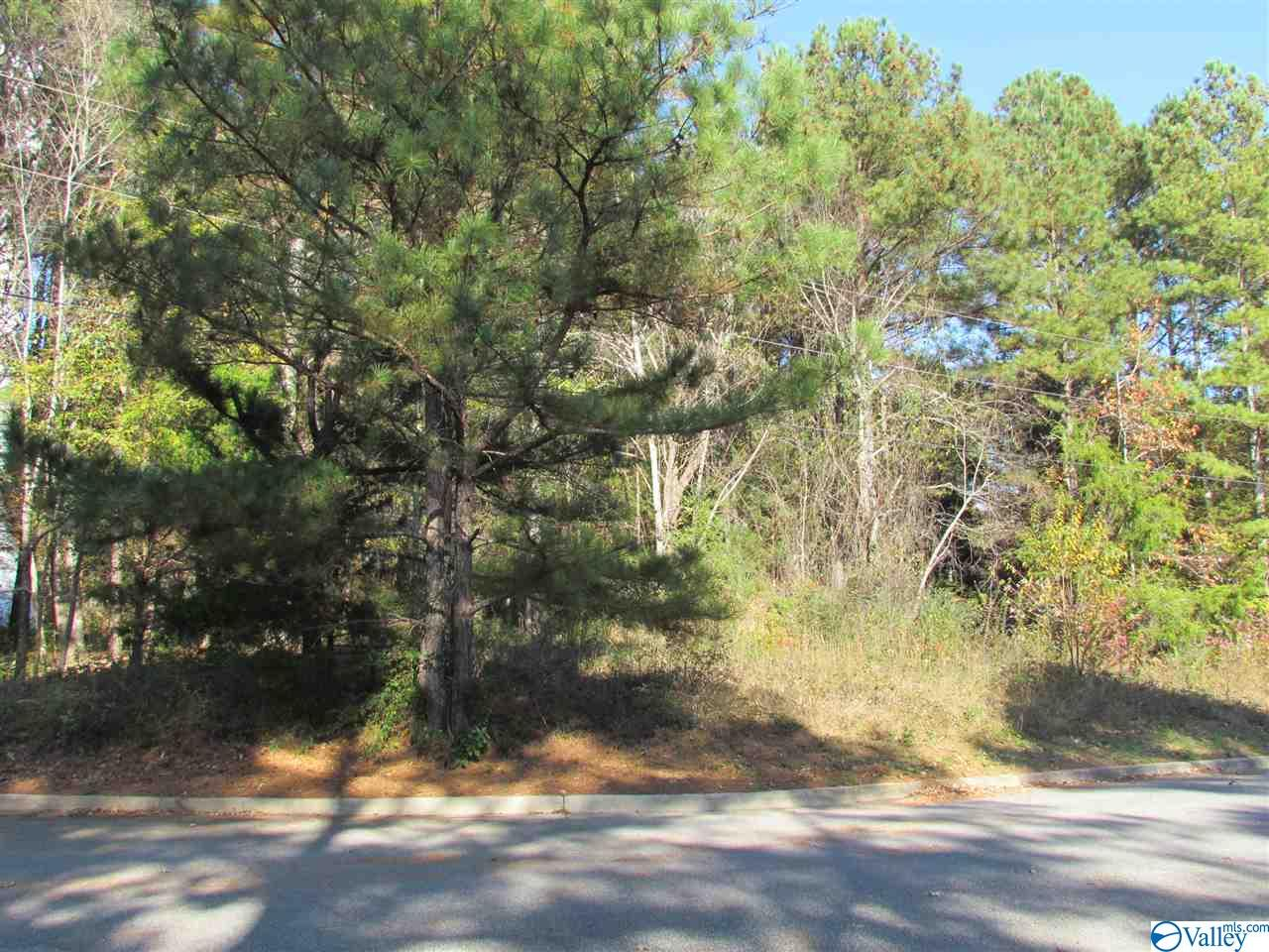 Photo of home for sale at 2902 Wood Hollow Trail, Decatur AL