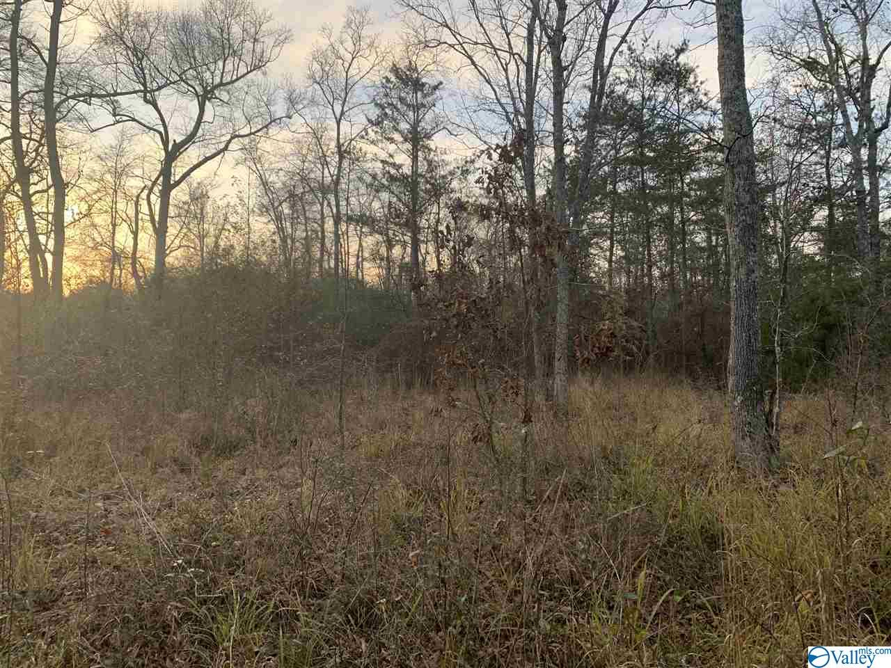 Photo of home for sale at 00 County Road 52, Cedar Bluff AL