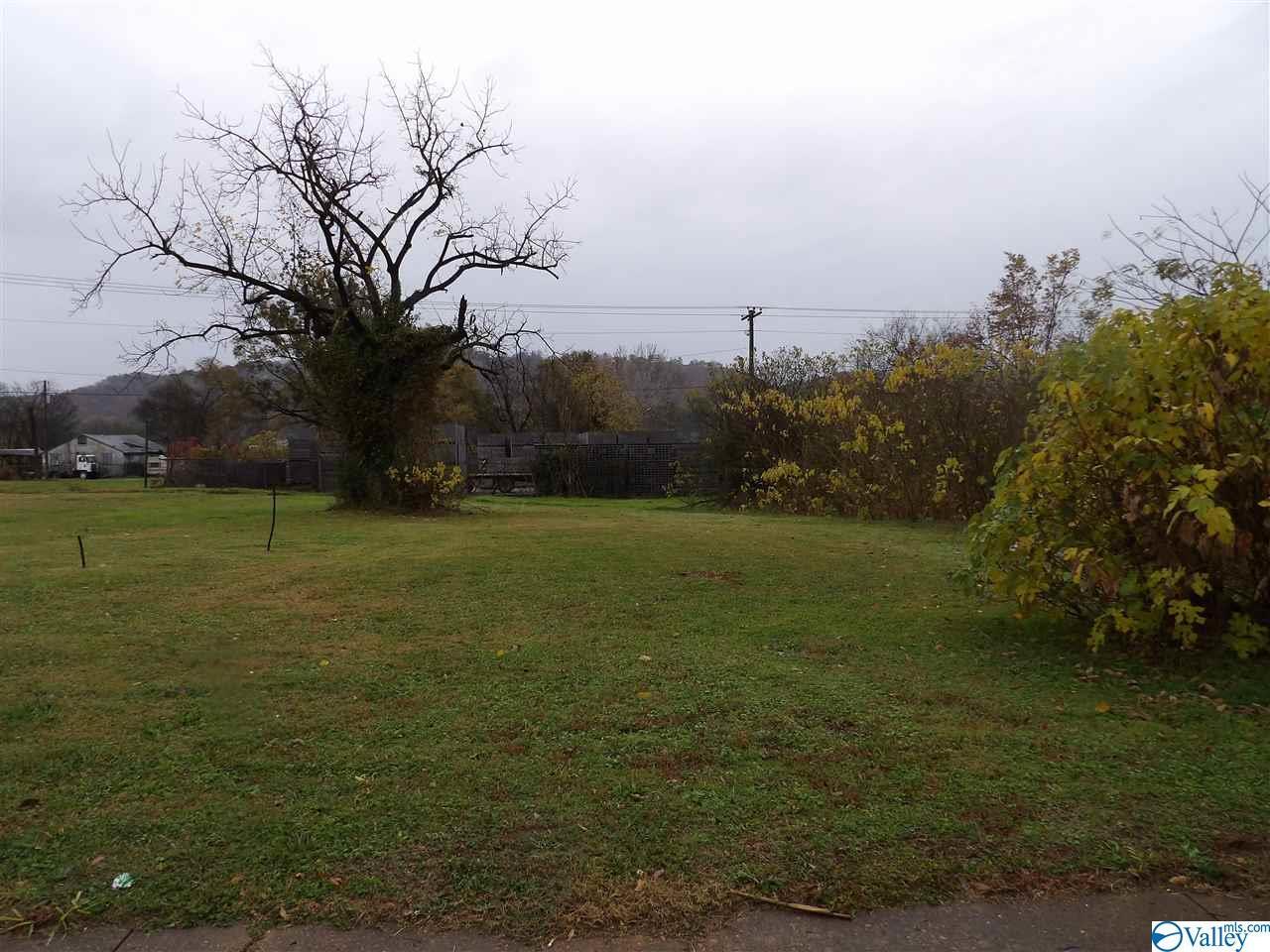 Photo of home for sale at 0 Blount Avenue, Guntersville AL