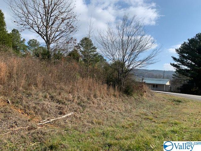 Photo of home for sale at 0000 South Sauty Road, Langston AL