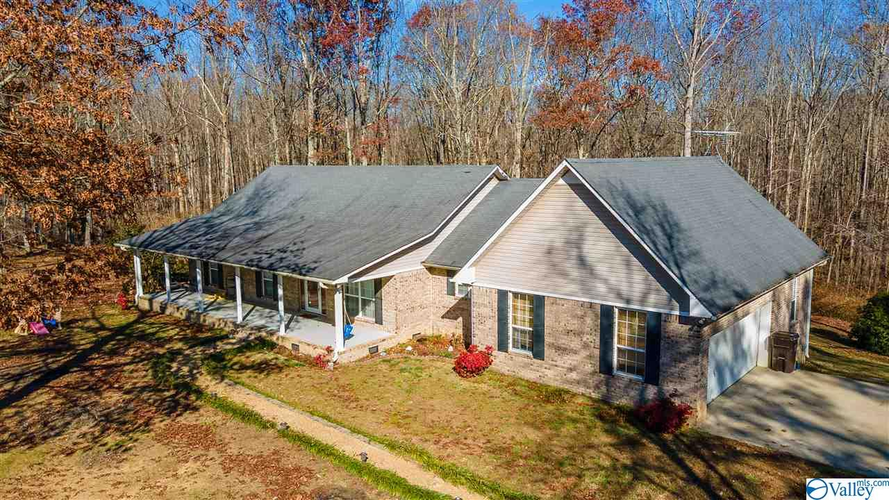 Photo of home for sale at 496 County Road 219, Skyline AL
