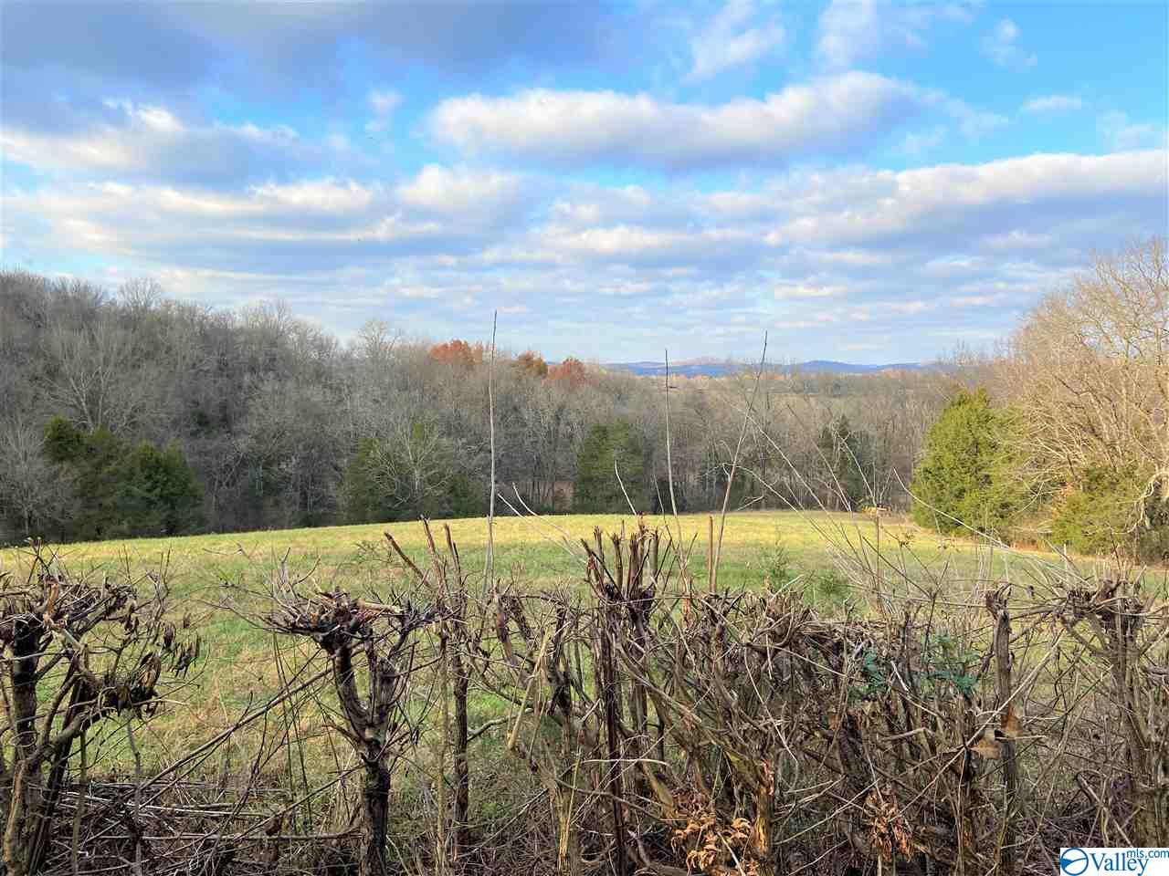 Photo of home for sale at 0000 Molino Road, Fayetteville TN