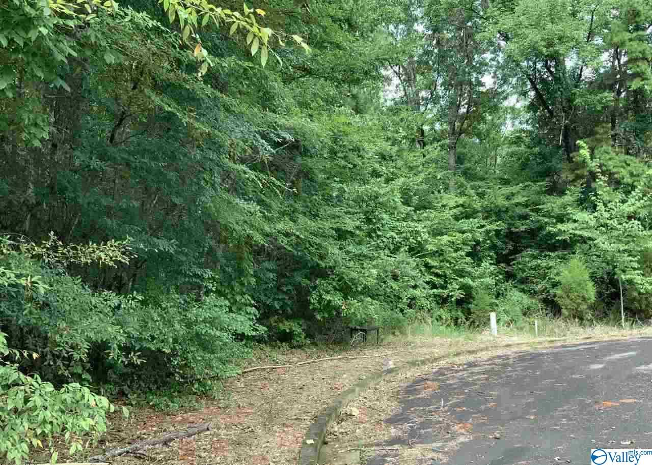 Photo of home for sale at Lot 19 Cade Circle, Leesburg AL