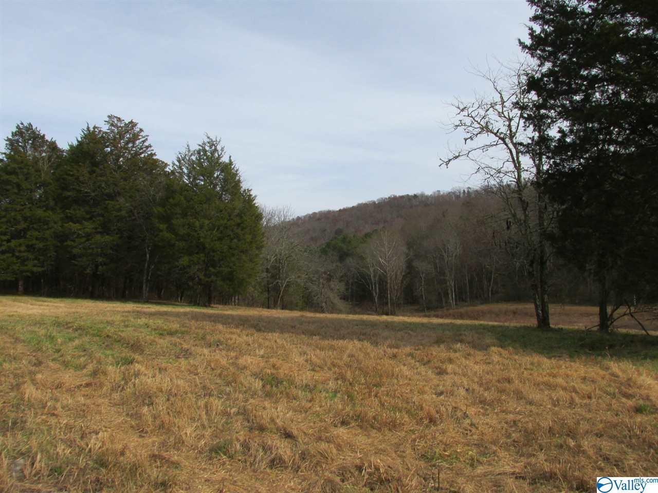 Photo of home for sale at Gann Road, Fort Payne AL