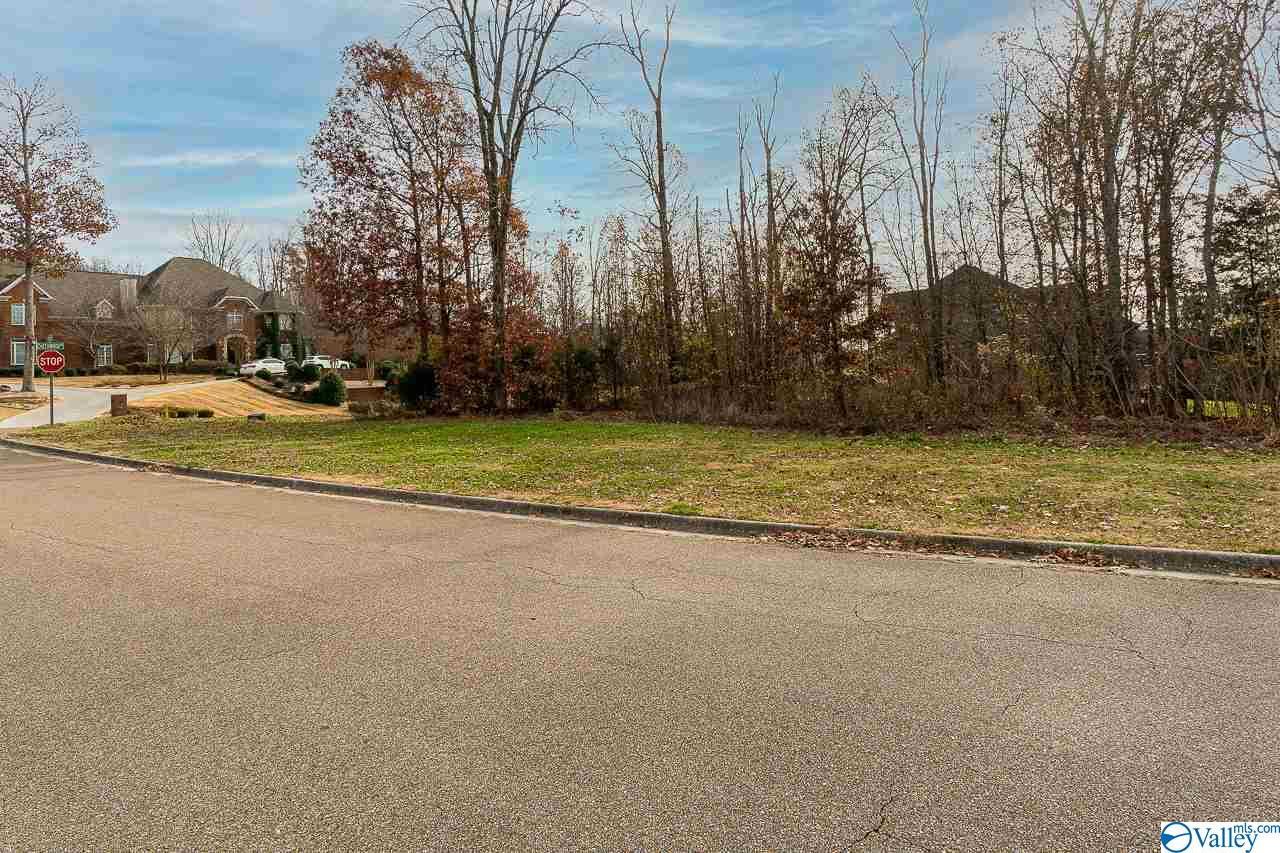 Photo of home for sale at 125 Cheekwood Drive, Madison AL