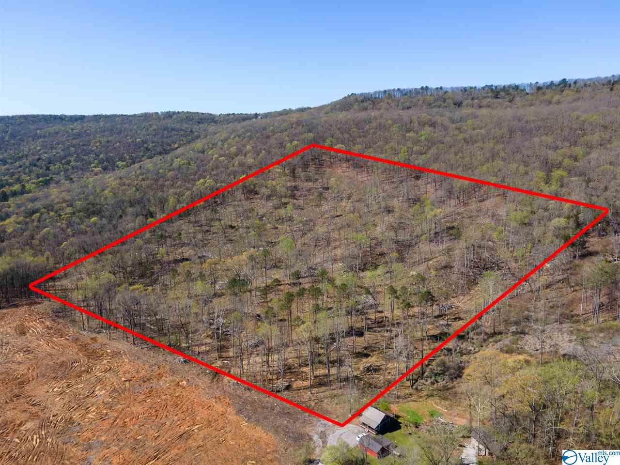 Property for sale at 0 Worley Drive, Owens Cross Roads,  Alabama 35763