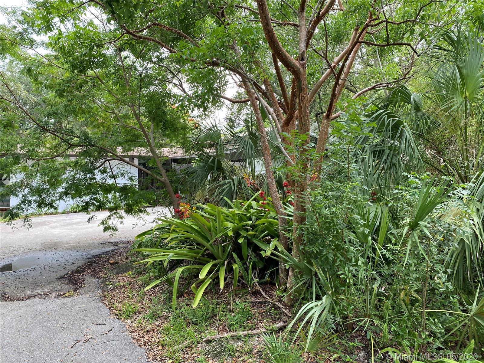 6060 SW 133rd St, Pinecrest, Florida 33156, 4 Bedrooms Bedrooms, ,4 BathroomsBathrooms,Residential,For Sale,6060 SW 133rd St,A10864561