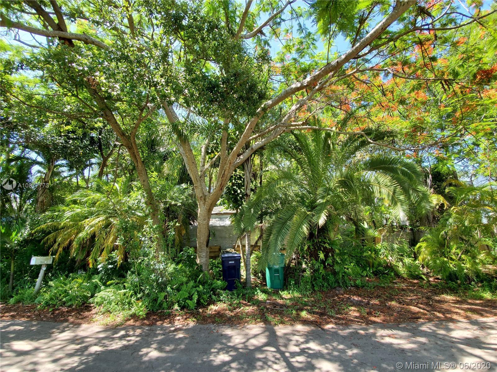 South Miami # - 04 - photo