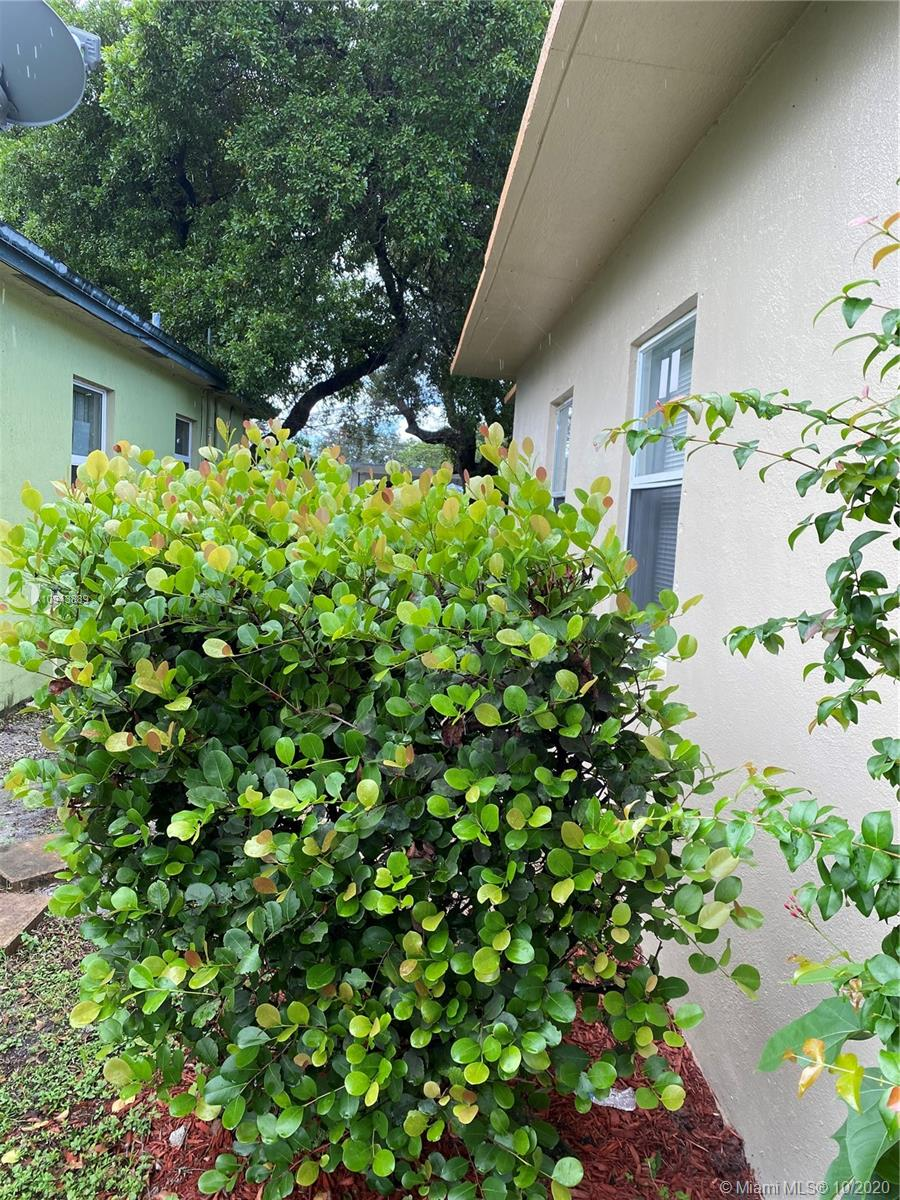 1610 NW 7th Pl, Fort Lauderdale, Florida 33311, 2 Bedrooms Bedrooms, ,1 BathroomBathrooms,Residential Lease,For Rent,1610 NW 7th Pl,A10943889