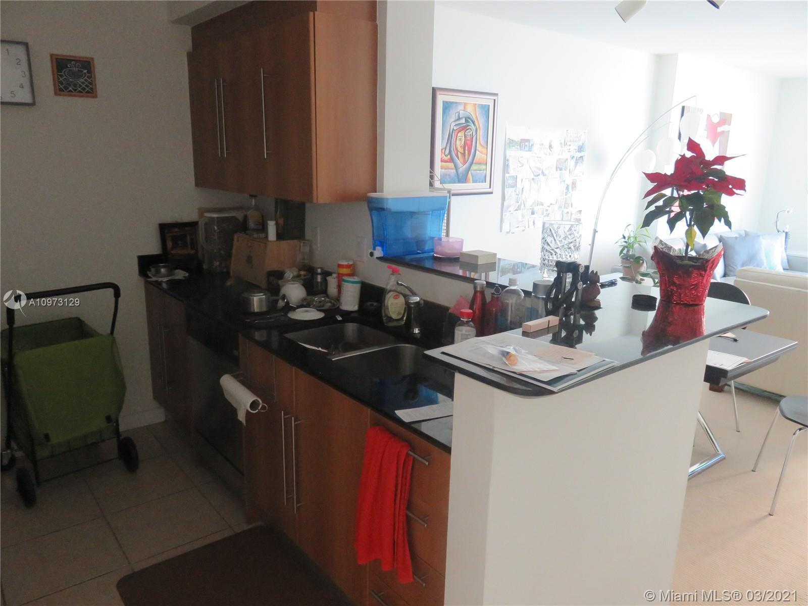 335 S Biscayne Blvd #3304 photo07
