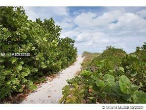 199 Ocean Lane Dr #209 photo028