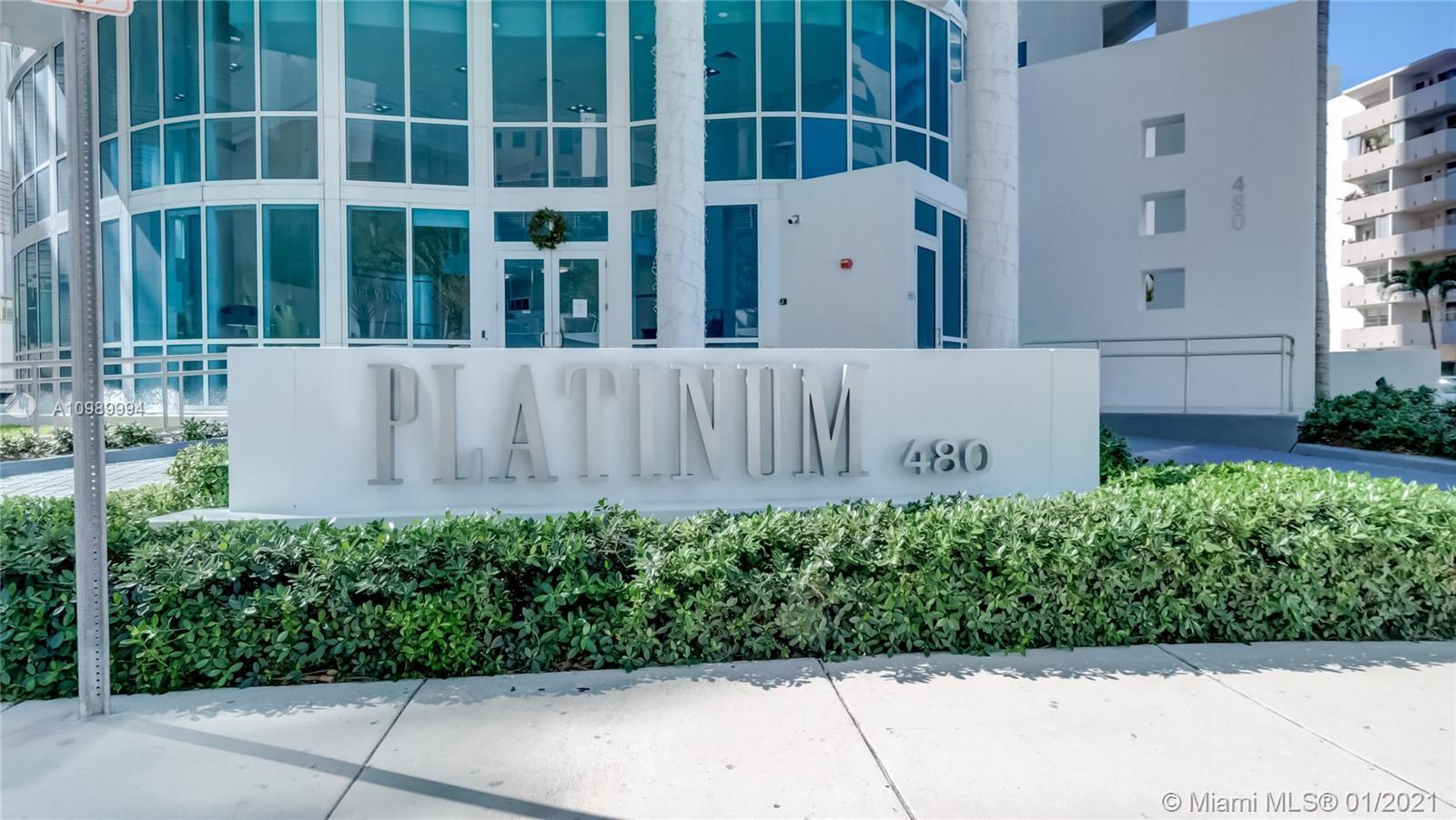 Platinum #401 photo03
