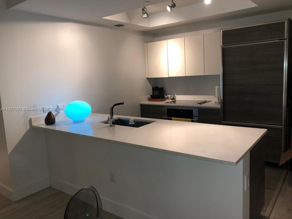 1100 S Miami Ave #1704 photo06