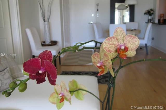 5151 Collins Ave #435 photo05