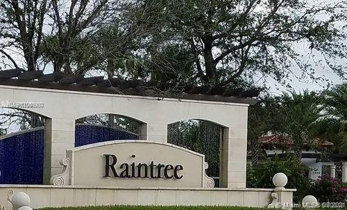 Raintree #11330 - 03 - photo