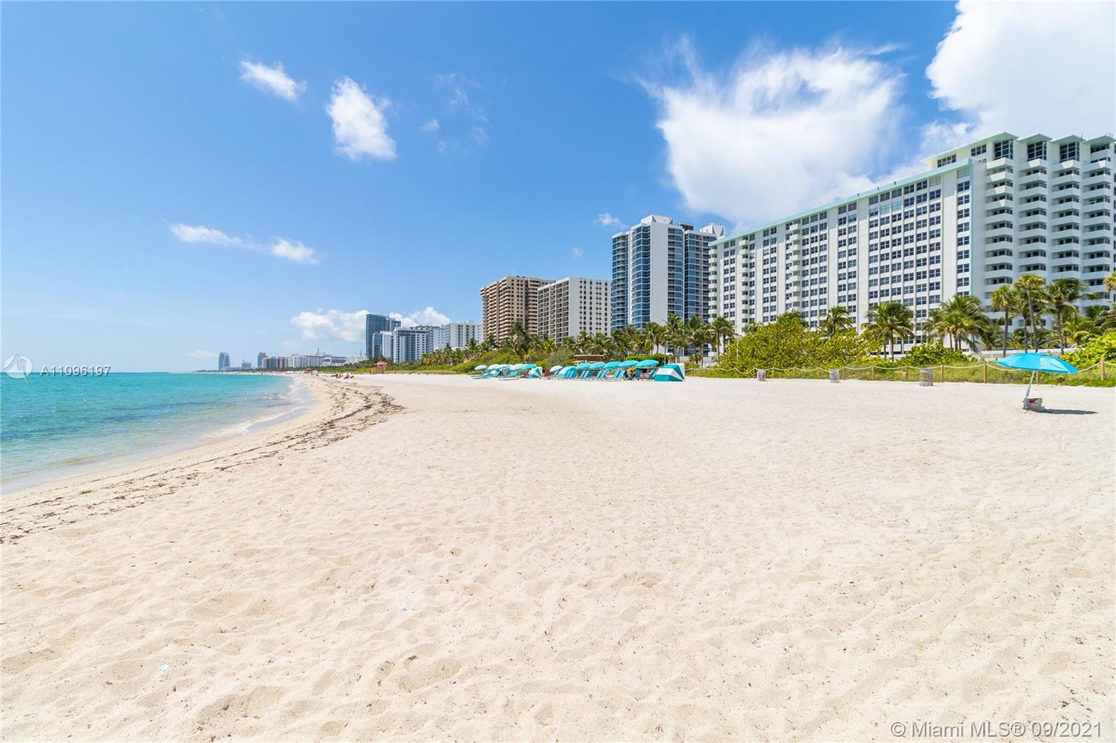 2899 Collins Ave #1029 photo033