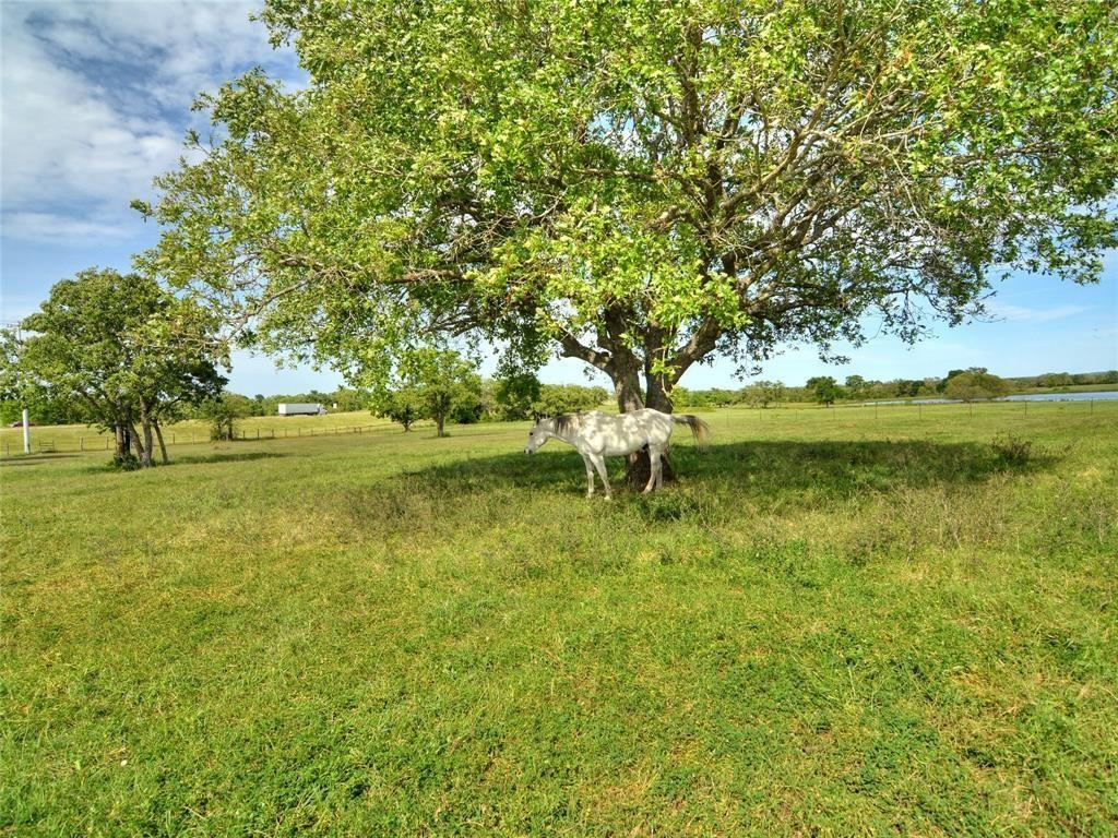 Beautiful raw acreage off of I-10 ready with a good mix of brush, trees, and pasture. Perfect for running a few head of cattle and for your hunting pleasures. Some good sites for your custom home, too. Aerial view of property is included in pictures and in additional docs. Currently Ag Exempt. Leased for cattle. Call agent with any questions.
