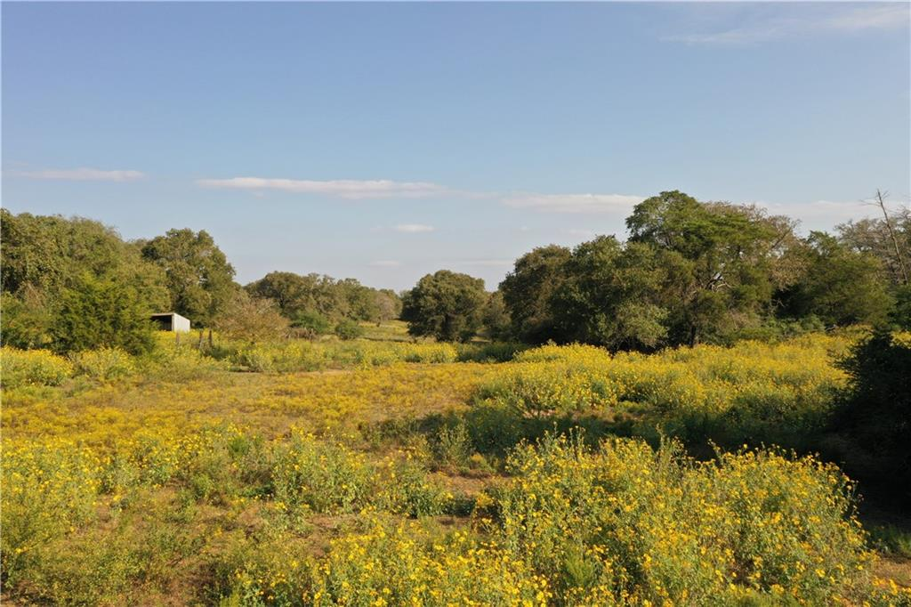 13 acres of secluded paradise just minutes from downtown Smithville. Property is located close to the end of a one way in, one way out road. Property has great wildlife and nice mature oak trees for your pleasure. Come see for yourself today!
