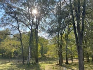 Are you ready to get some space from your neighbors??? Come out to the country and be surrounded by gorgeous trees and wildlife instead! This land is located 44 minutes from Austin and 25 minutes from Circuit of the Americas Don't miss your opportunity live in the country but still be close enough to everything you need! You'll also have a private driveway with an electric fence!