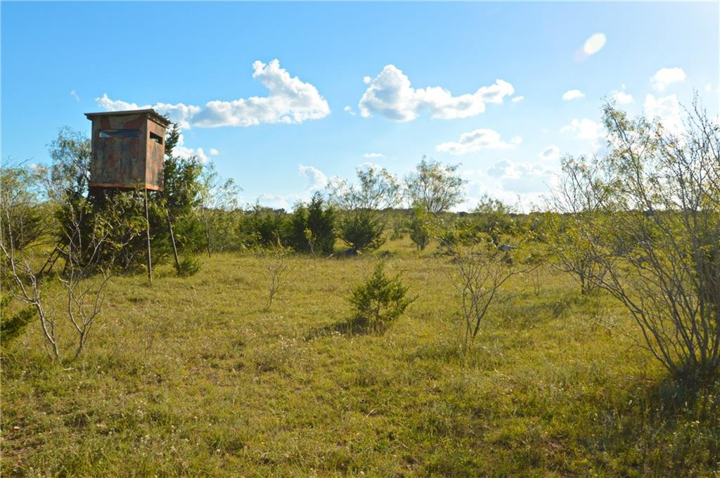 40 acres, Burnet County, Lampasas ISD, great place to build a home and raise a family!  Great get away place, quiet and serene but close to town!  Great get away, hunt, good cover for wildlife, deer, turkey, birds!  Only minutes to Lampasas!
