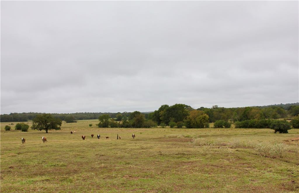 65+/- acres of cleared, rolling and improved pasture in a very secluded area with a good building site and beautiful scenic views! The property is fenced for cattle and features three stock ponds, lots of wildlife and would make a great home or recreational place. Rural water is not on the property, but is nearby.
