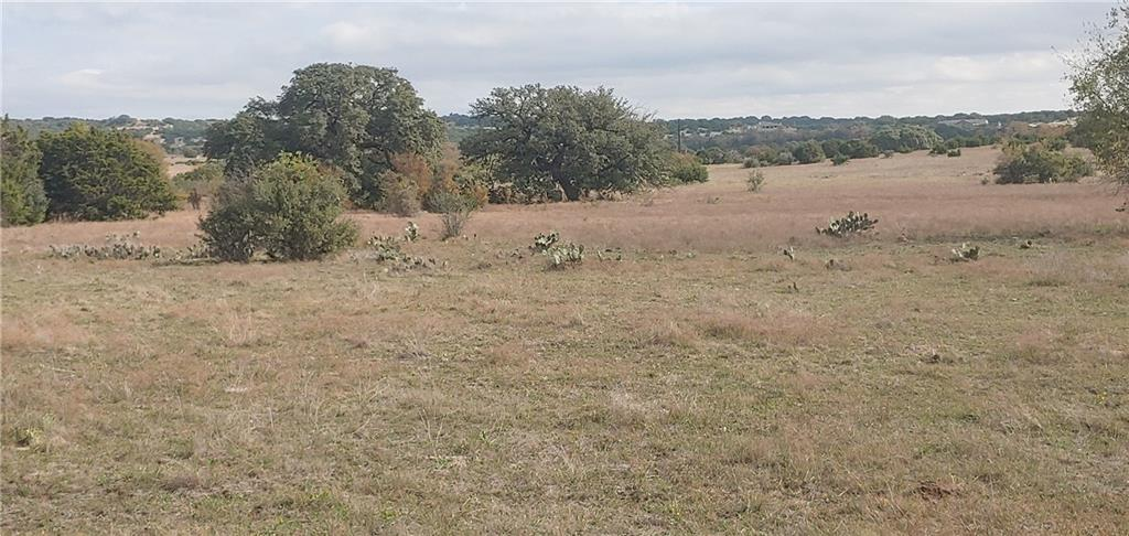 83.26 acres , Creek , Large oak  trees ,&  open area.1500 ft frontage 3200 ft depth.  Need well and septic .  Presently in ag exempt Cattle lease to be honored until Jan 1 2021
