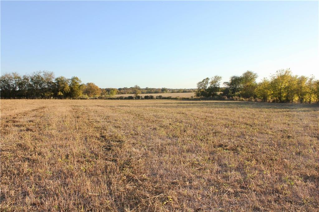Approximately 7 miles east of Lexington, less than 20 miles from Caldwell and 40 miles from Bryan/College Station. 