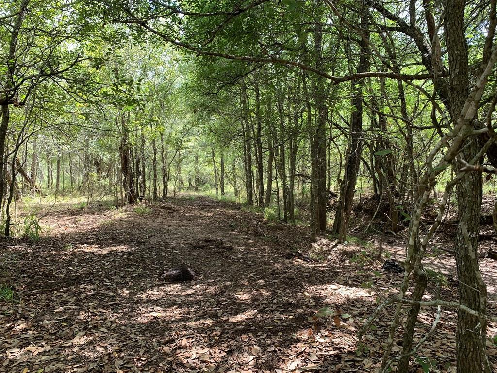 This 29+/- acre piece of property sprawls across Gonzales and Fayette County lines. Believed to be present septic but it's not confirmed by the seller, buyer to verify. **Legal Description of Properties Involved: Legal Descriptions: Fayette CAD- ABS A068 MCCOY J JR 1/4 LG, 10.14 ACRES, NO BLDGS OR M H: Gonzales CAD - 549 J M MCCOY, 9.90 acres; 7.50 acres; 323 JOHN H LIVERGOOD 1.00 acres, & 1.00 acres**