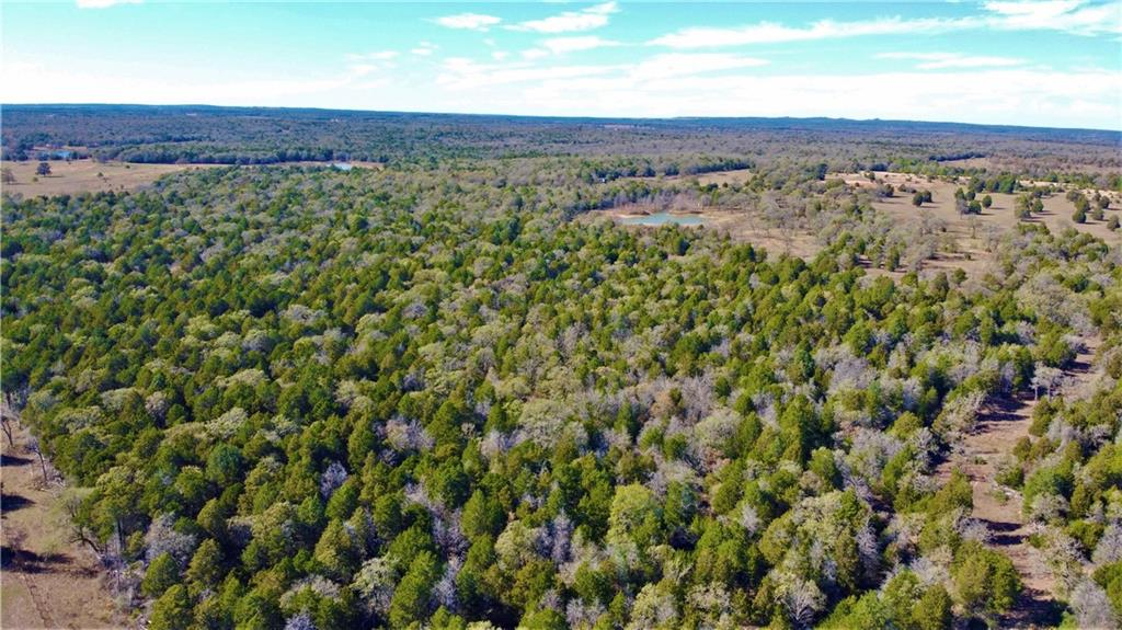 Beautiful Wildlife Retreat or Recreational Paradise! This property could be used as a recreational retreat or your dream ranch property. Deer, turkey, ducks, dove and hogs call this property home! Escape the big city and have your own private retreat yet still be within an hour of Austin's International Airport (ABIA) and 2 hours of Houston or San Antonio. This 96 acres are two 48 acre tracts that are side by side. WILL CONSIDER SELLING THE 2 TRACTS SEPARATELY. The tracts are surrounded by other lager tracts of land for full privacy. Views of acres of trees, neighboring rolling pastures, scattered oaks and elm trees make this a unique property to enjoy as a permanent residence or weekend recreational retreat. There is a pond and a wet weather creek. The property is currently being leased for cattle grazing to maintain an AG exemption (2020 property taxes are $50!). The deeded entrance from a private road offers privacy and seclusion. Call to schedule a showing of this beautiful property today!