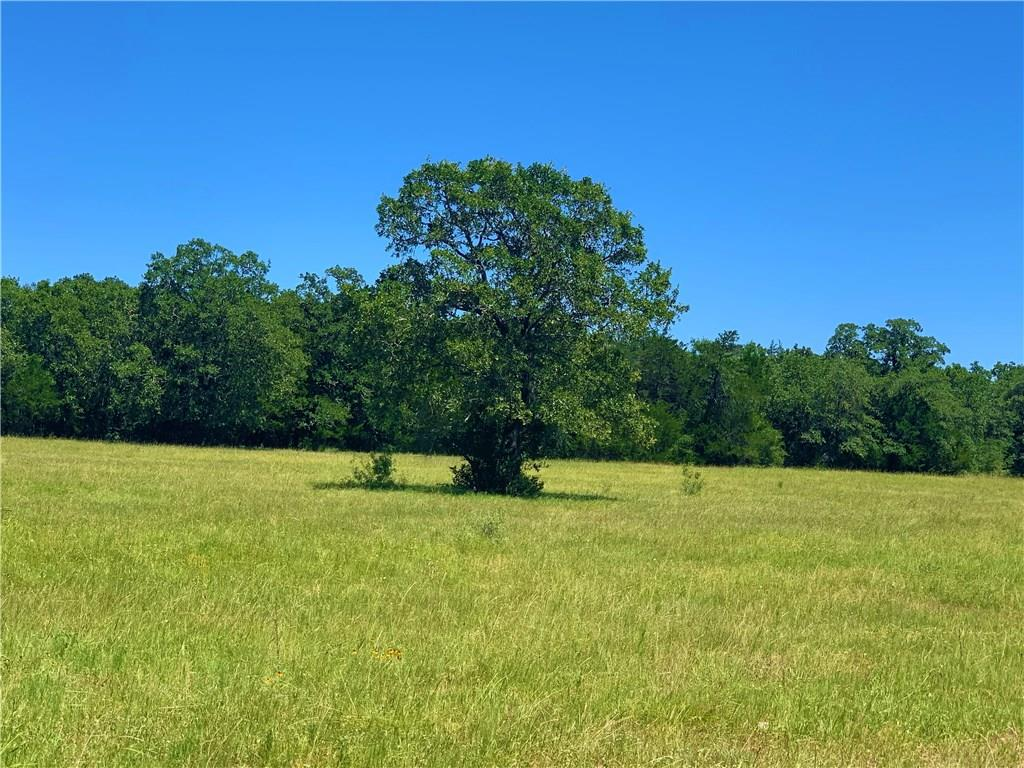 A secluded property featuring open pastures and woods. The wet weather creek is bordered by a variety of hard woods and underbrush creating great cover for an abundance of small and large game. Fayette County water available on FM 2237. Property access road off of FM 2237. Light Restrictions on the property, i.e. no mobile homes.