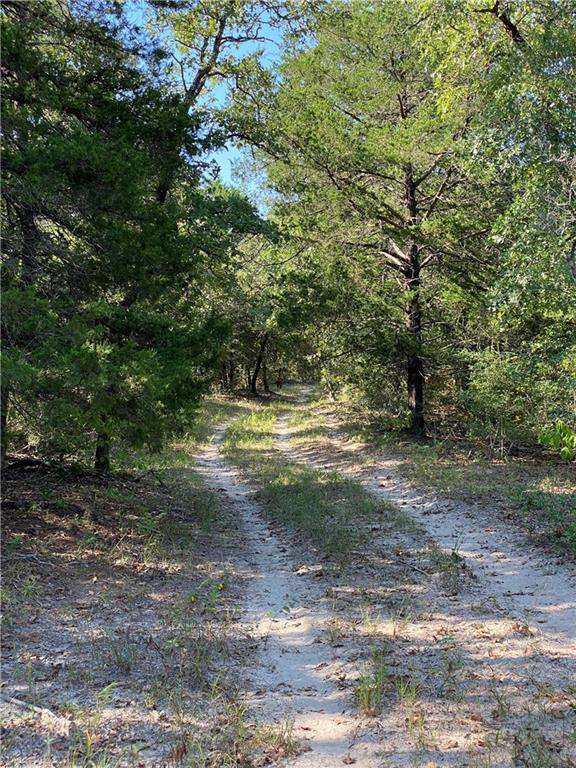 This is 40 acres split out of MLS 7039251 (166.20 acres) if you do not need it all. Or ask for another size portion if you want more. $10,000 per Acre. You don't see that price much any more. See Listing Agent. Gorgeous country tract. This large, unrestricted tract backs to an exotic game ranch where you will see axis deer, elk & bison from your side of the fence. Gently rolling terrain with water for your livestock or fishing. Aqua Water Svce is available at Peach Creek Rd. Many beautiful homesites to choose from if you are planning on building your dream ranch house. Fenced and gated. Paved road to get to tract. Smithville ISD w/ Waelder address due to zip code. Just southwest of Rosanky.