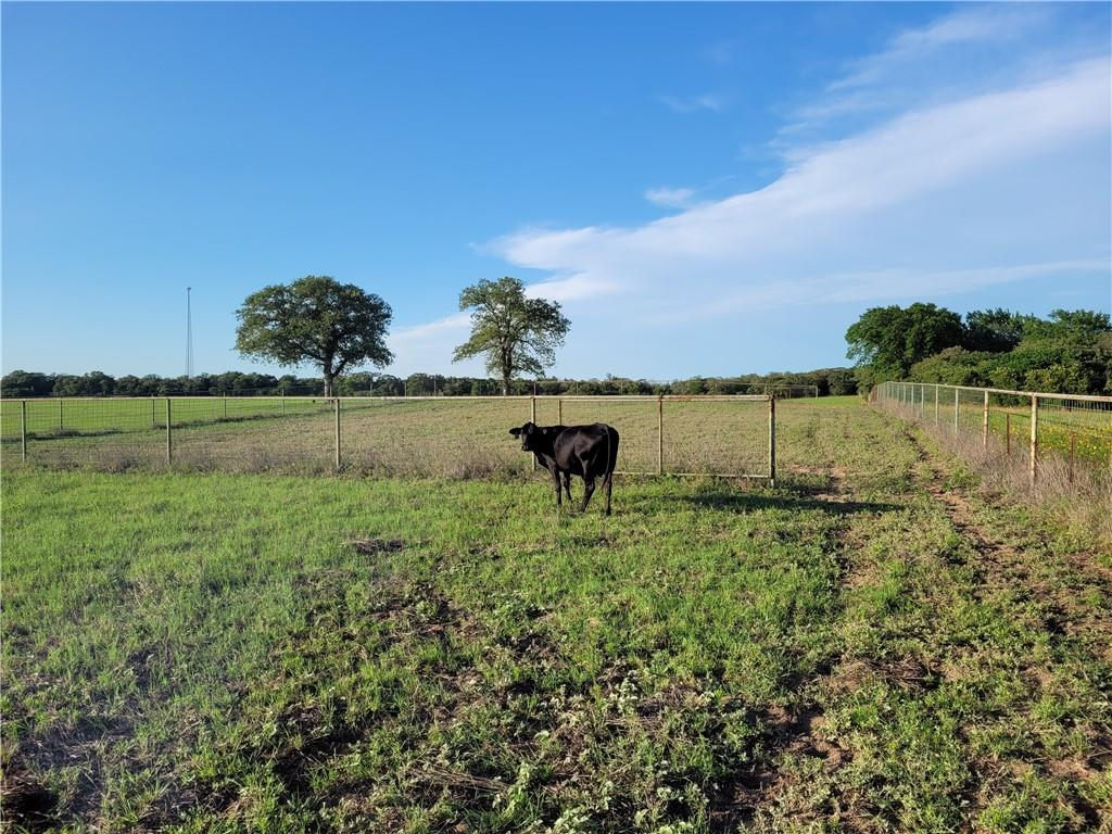 NEW PRICE! Open pasture land for grazing your stock or planting hay. The property has frontage on Sayers Road with the majority of the land approximately 1800 feet off the road, creating a quiet homesite for your new home.  Large trees are scattered through the property. There is an existing well that requires electricity being brought in to run. The property is relatively flat, consequently all the acreage is useable.  Enjoy country living located less than one hour to Austin, 15 minutes from Bastrop (and Buc-eyes) and 15 minutes to Elgin.