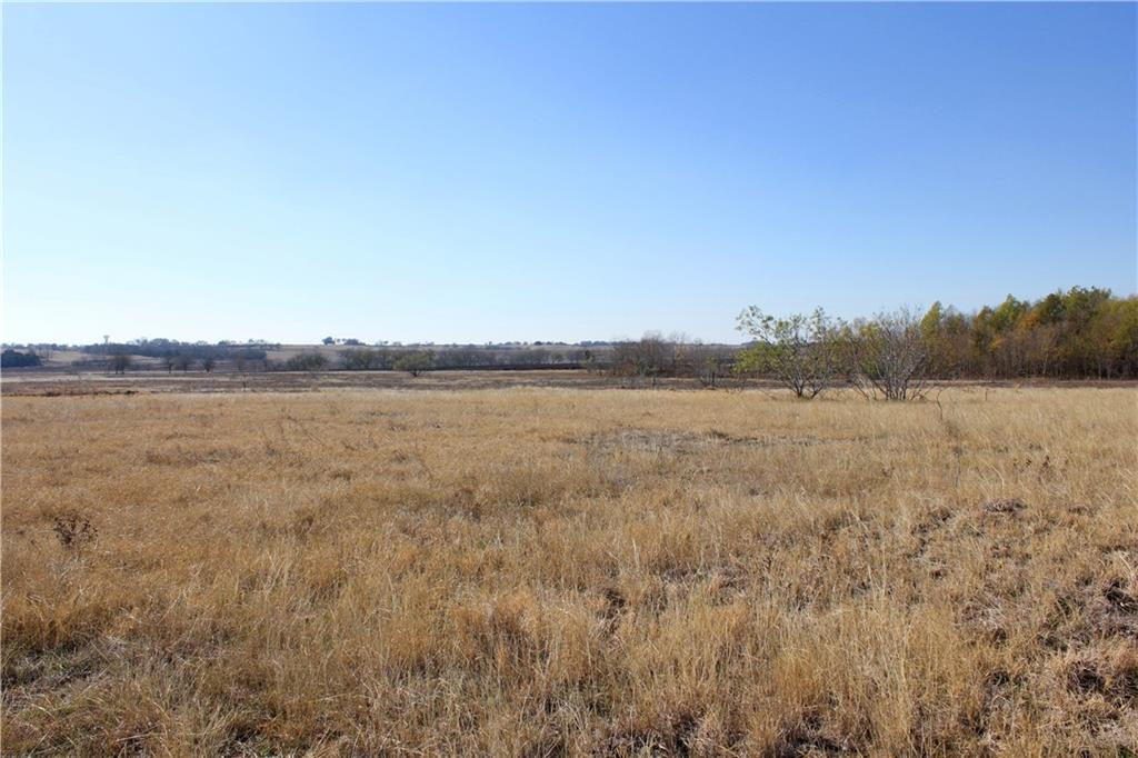 116+/- acres of rich blackland in a great, central location with tons of potential!