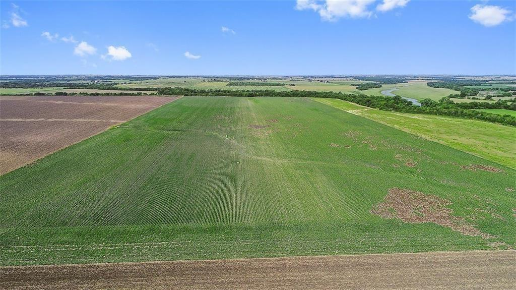 Highly productive farm land in rapidly expanding Thrall. 100+/-acres to be surveyed upon receipt of contract. Exceptional and fertile Williamson County farm land with consistent and long record of strong production. Backs to Brushy Creek, Panoramic and open views and this summer summer produced a another superb cotton crop~ Surrounded by other large farms and great opportunity to invest before the end of year in this fabulous farm...Ag exemption in place and minutes from Taylor. Restrictions: none known
