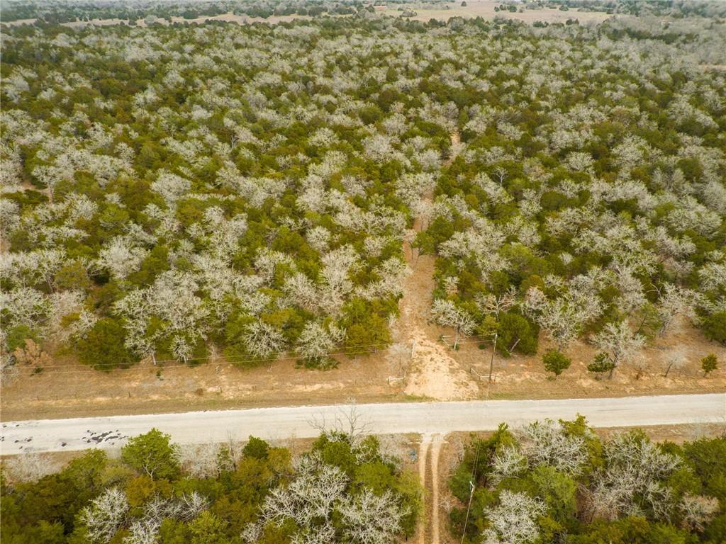 Looking for acreage located less than 10 miles from the heart of Bastrop? You have found it. This property is heavily wooded and partially cleared. The best of both worlds. Wildlife exemption in place.