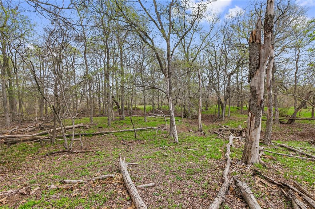 32 +/- unrestricted tranquil acres in an amazing private location. Start with a blank canvas. Great fertile soil. Cattle currently on the property. Ag Exempt! Stock Pond. Electric & Water on property. Gated & Fenced. No City Taxes. Easy access to I35, 46 & I10. Proximity to Seguin, New Braunfels & Gruene!
