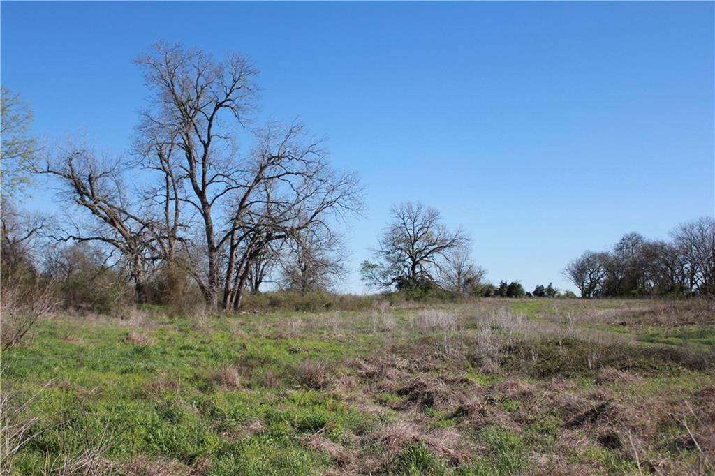 78.58+/- Ag-exempt acres with good, black soil, located right outside of town!