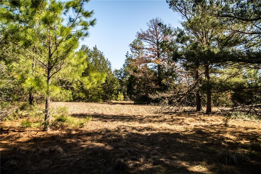 The Wiest Ranch, consisting of +/- 80 acres located along Prickly Pear Creek in eastern Bastrop County, offers a variety of possibilities. With electricity in place and AQUA water along FM535, this would make an ideal secluded homesite or hunting ranch. This property, it its raw form, offers staggering pines, elms and multiple oak varieties. The wildlife on the Wiest Ranch have been left undisturbed for years. Whitetail deer, turkey, and hogs find their home along the 3500' of Prickly Pear Creek. There is an old homesite on the property with numerous outbuildings and rooms full of antiques for those that like to explore. Located 7 minutes to Smithville, 20 to Bastrop and 40 to Austin, this location is ideal for multiple commuting scenarios.