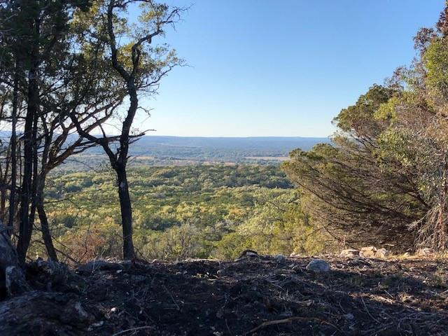 Private, quiet country land with varied topography from rich bottom land with fantastic grasses to views as far as you can see. Wet weather creeks and 360* views, you can have it all!  Own a Texas ranch with 100+ acres with minimal restrictions.  Three individual parcels of land, approximately 104, 106 and 113 acre tracts for sale each at $20k per acre or buy them all and have 323 acres!  Build your dream home, use the land for hunting or just recreation and build later.