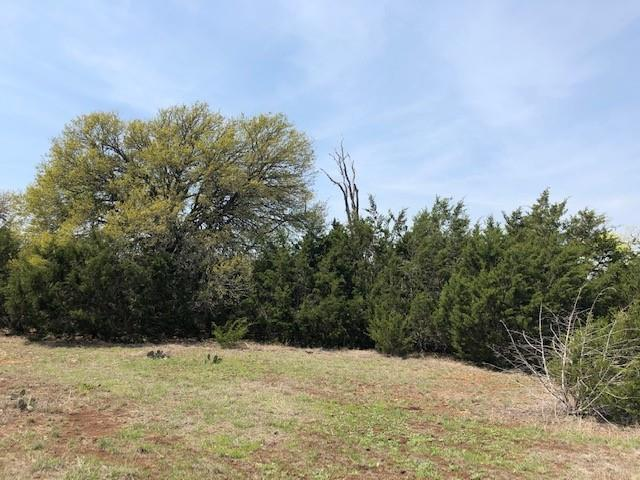 Looking for beautiful soils? Dripping Springs is not known for soils, but for this is an IDEAL horse property!!! Fenced on the south and west sides, electrical runs along the Eastern boundary, the north line is being adjusted to make this property as close to 10 acres as possible! Oaks surround the borders and a few in the interior. There are rock walls along the northern-most boundary. You get distant hill country views to the East and even better from a second story. Make this gorgeous property your new homesite and bring the animals!!! Almost forgot, there's even an earthen backstop for shooting practice!