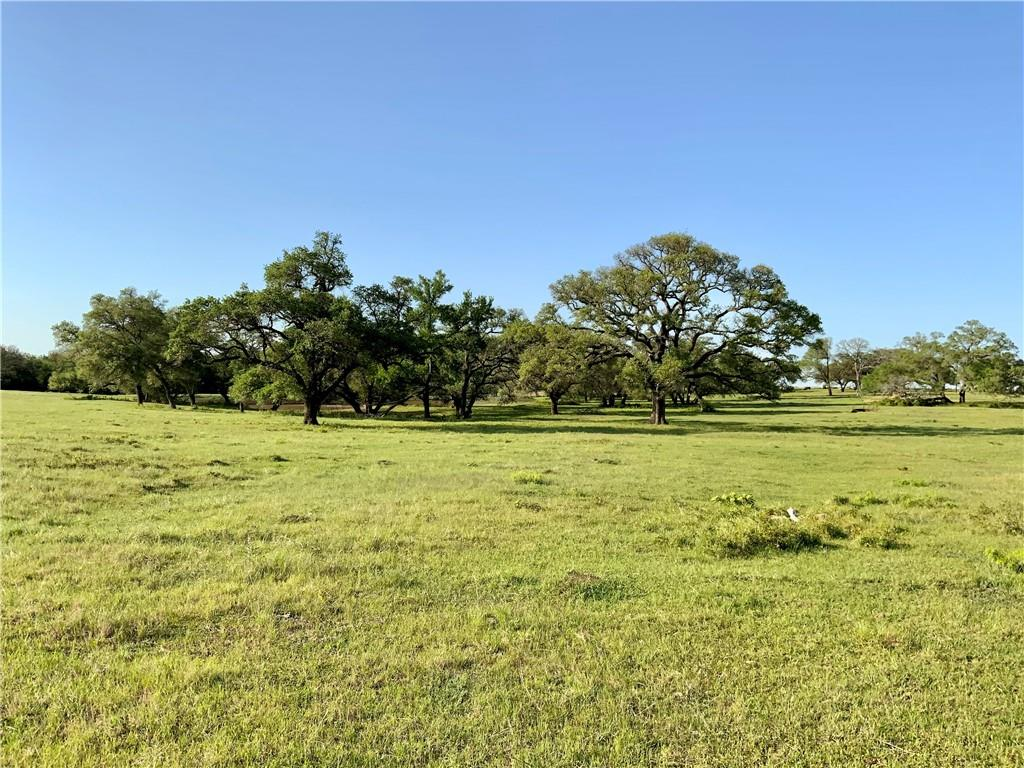 54 +/- ACRES with 1735' of Highway 290 Road Frontage going westbound. Existing entrance is off of CR 202, but has the potential for multiple entrances off of Highway 290 for easy access to a major highway. Property would be excellent for commercial development, residential housing lots, or agricultural use. No zoning or restrictions. Property is rolling land with wooded area down the middle portion, oak trees, pond, and improved pasture for horses or livestock. Fencing on all four sides. Soil type is clay. Lee County Water Supply runs along the front of the property paralleling HWY 290. Bluebonnet Electric power line crosses the property on the west side. Property is located just east of Paige, Tx., and a short commute to Austin, Bastrop, or College Station. Great commercial potential or residential opportunity!
