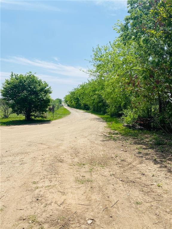 Beautifully tree lined driveway