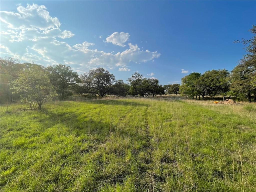"Panoramic, 360 views of the Wimberley Valley compliment completely flat build sites in dozens of different locations on this ideally situated ranch property - just 2 miles from the heart of downtown Wimberley Square (50 minutes south of Austin).  In addition to the commanding views throughout, this 55 acre ranch has an unparalleled variety of native flowers, grasses, trees, and wildlife owing to many decades of conscientious stewardship and much ongoing investment.  On a recent visit, an Austin-based expert Botanist / Naturalist called this particular ranch a ""marvel"" and ""among the top 1% of the most bio-diverse land in Hays County"". This property has a Wildlife exemption and has been cleared of cedar and much of the underbrush.  There are level pastures that make this a great horse property.   From the hilltop to the meadows, the location, views, proximity to town, and overall character make this property a must-see...with potential to develop a legacy ranch for your family for decades to come!"